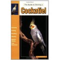 Guide to Owning a Cockatiel