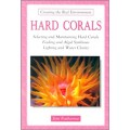 Hard Corals (Creating the Reef Environment)