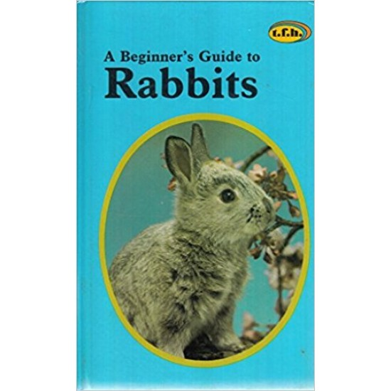 A beginner's guide to rabbits