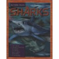 Action Files Sharks Spiral-bound – Illustrated